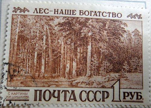 Лес - наше богатство! (с картины И.И.Шишкима)