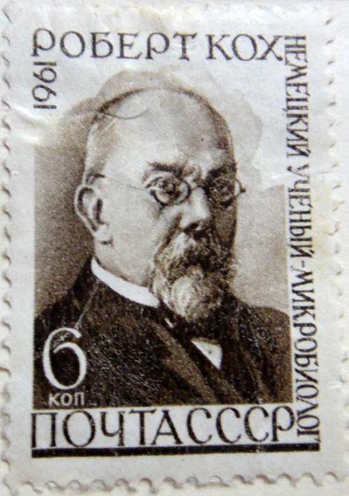 Роберт Кох. Немецкий учёный микробиолог