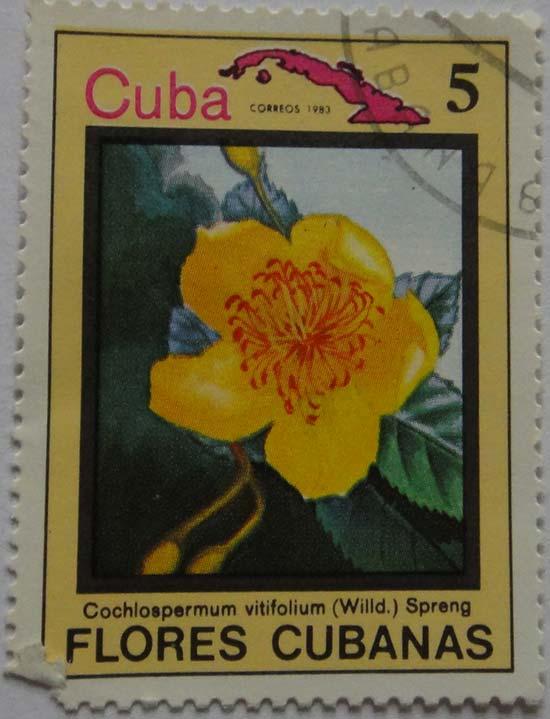 florescubanas